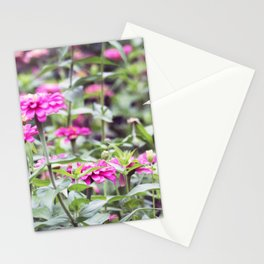 Longwood Gardens Autumn Series 139 Stationery Cards