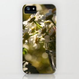 some more iPhone Case