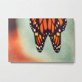 Monarch Study #6 Metal Print