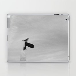 COYOTE POINT (B+W) Laptop & iPad Skin