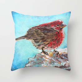 Shivering House Finch Throw Pillow