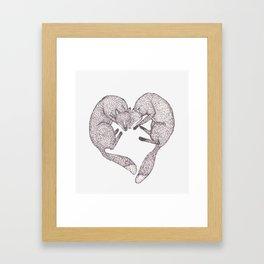 Fox Heart Framed Art Print