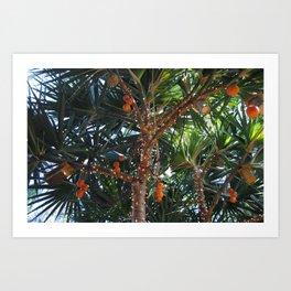 Tropical Breeze Art Print