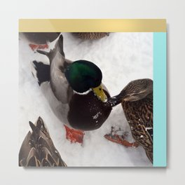 like snow off a duck's back Metal Print