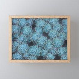Succulent Euphoria Framed Mini Art Print