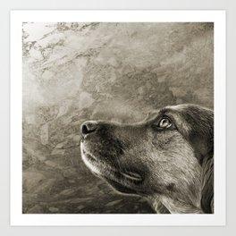 Black and White Loyal Dog Art Print