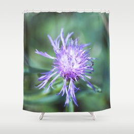 Knapweed Shower Curtain