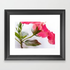 What lies beneath Framed Art Print