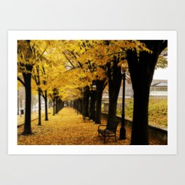 Autumn's Gold Art Print