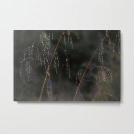 Sparkling Raindrops Metal Print
