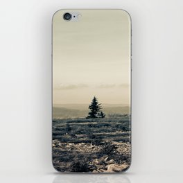 A Lonely Pine iPhone Skin