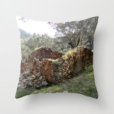 Weathering Throw Pillow