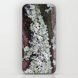 Moss Log 3 iPhone Skin