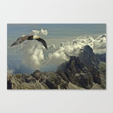 Bird of Prey Canvas Print