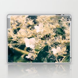 Hydrangea at June Laptop & iPad Skin