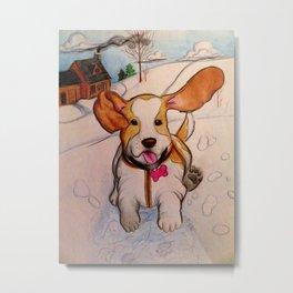 Sadie the Sled Dog? Metal Print