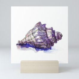 Watercolor Seashell Painting on White 1 Minimalist Coast - Sea - Beach - Shore Mini Art Print
