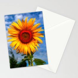 Blooming Sunflower  Stationery Cards