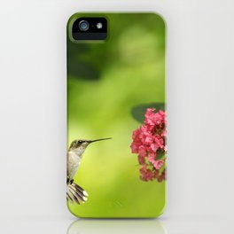 Hummer in Flight iPhone Case