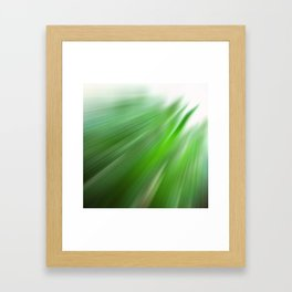 Aloe Framed Art Print