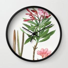 Oleander (Nerium oleander) from Traite des Arbres et Arbustes que lon cultive en France en pleine te Wall Clock