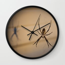 Black and Yellow Argiope and Shadow Wall Clock