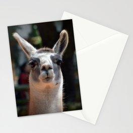 Lama Stationery Cards