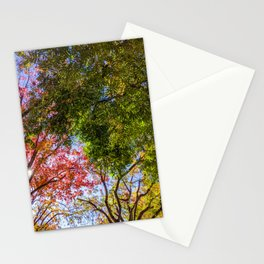 Autumn Leaves in California #1 Stationery Cards
