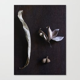 Essence Canvas Print