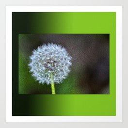 Dandelion ready to fly away - op Art Print