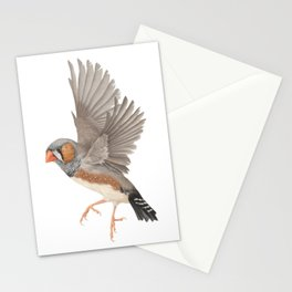 Zebra Finch Stationery Cards