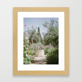 Garden at Gethsemane - Holy Land Fine Art Film Photography Framed Art Print