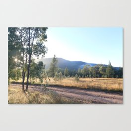 Early Mornings  Canvas Print