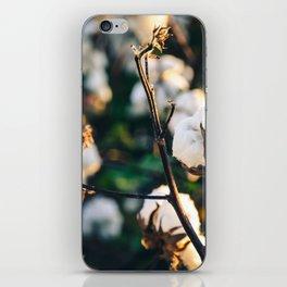 Cotton Field 20 iPhone Skin