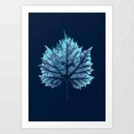 vine leaf autumn Art Print