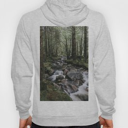 The Fairytale Forest - Landscape and Nature Photography Hoody