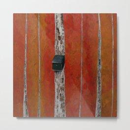 Bird House On Birch Tree Metal Print
