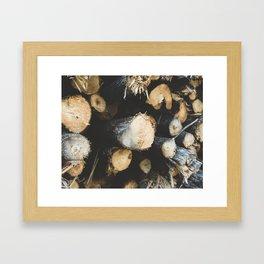 Woodpile Framed Art Print