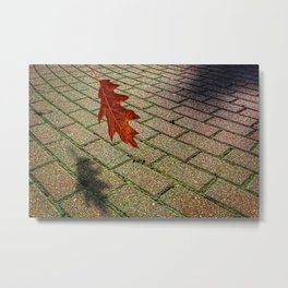 First Leave Of Autumn Metal Print