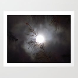 Full Moon Branch Art Print