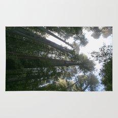 redwoods Rug