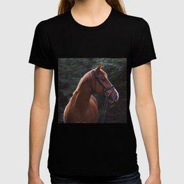 henry.  T-shirt