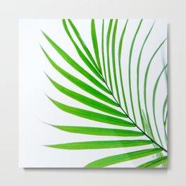 Simple palm leaves Metal Print