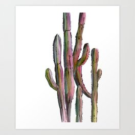 Cactus in green and pink Art Print