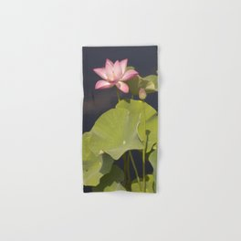Pink Lotus by Teresa Thompson Hand & Bath Towel