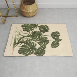 1800s Encyclopedia Lithograph of Philodendron Plant Rug