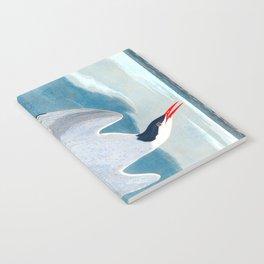 Arctic Tern Bird Notebook