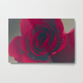 Red Rose Floral Bliss Metal Print