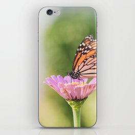 Monarch and a Zinnia iPhone Skin