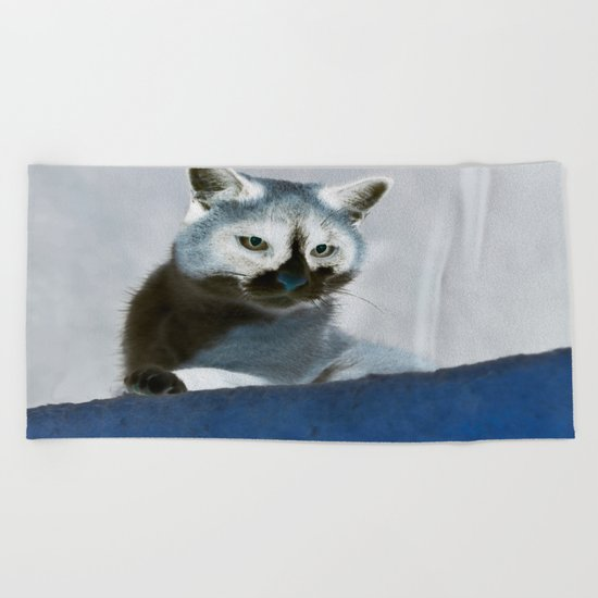 Blue Snow Shoe Cat on the Prowl Beach Towel